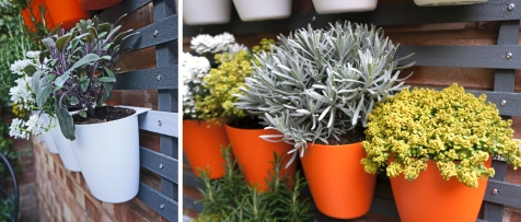 Pots clip firmly onto light grey slat. Choose plants to compliment pot colours.