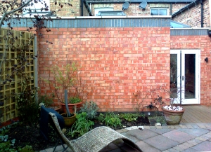 Trellis wall before