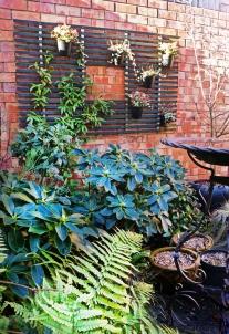 Winter Trellis with fern