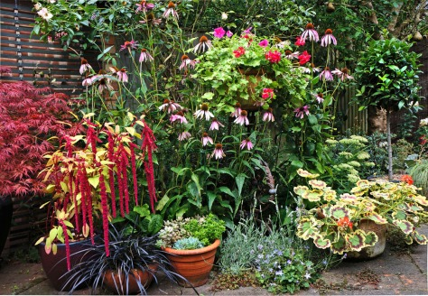 Everything get a bit of support in my garden.