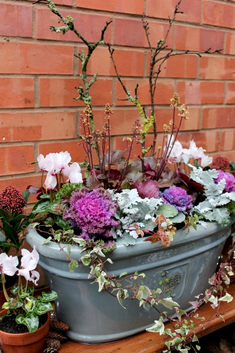WINTER CONTAINER