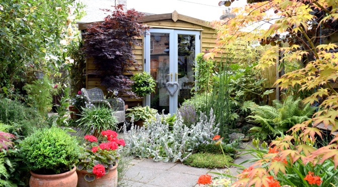 Transform a dull shed into a gorgeous she-shed
