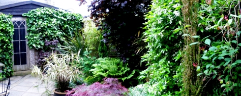 When ivy was the thing to treasure...