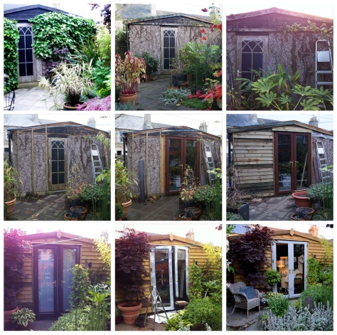 From ivy glad, to nightmare, then a beauty is born!