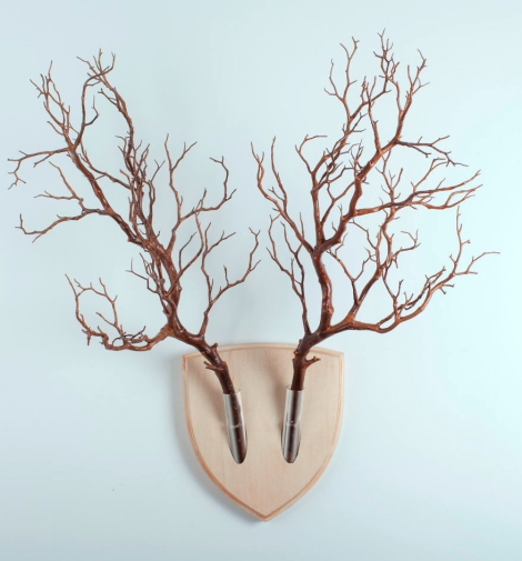 http://www.boredpanda.com/forget-dead-animals-bring-your-walls-to-life-with-this-plant-wall-trophy/