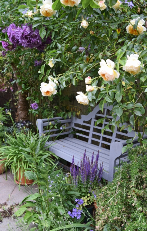 Roses smothering the Lutyens bench.