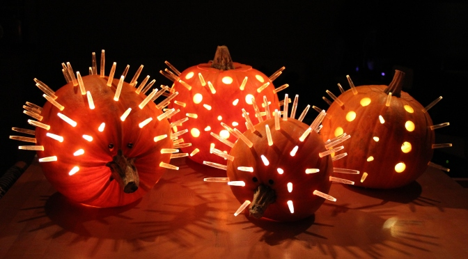 How to make a pumpkin hedgehog