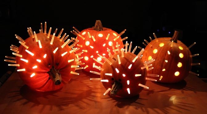 How to make a pumpkin hedgehog