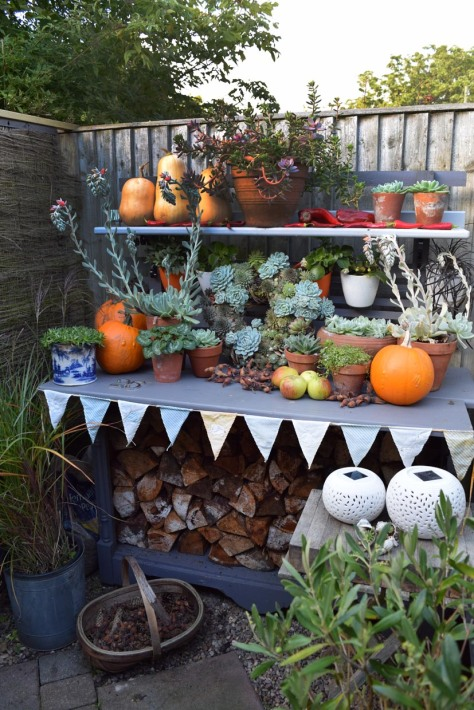 Potting bench/wood store is a useful space for your pride and joy in the autumn too.