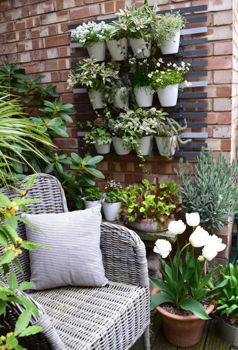 White wall planter&chair2