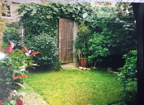 The day I first clapped eyes on my little garden.
