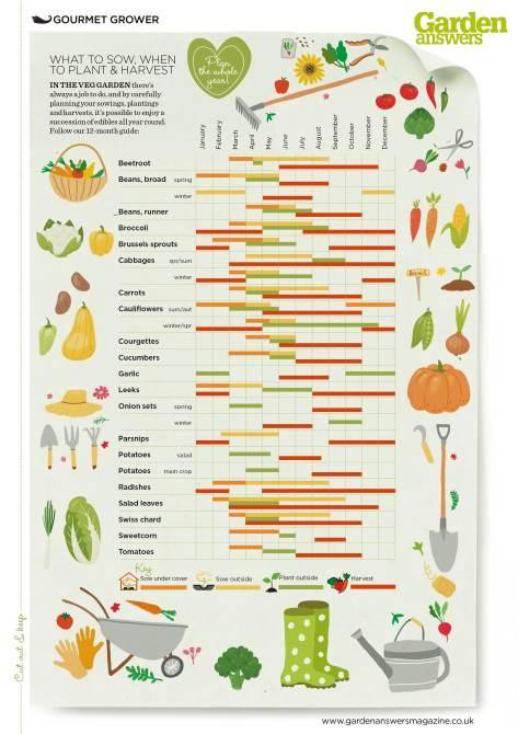 Veg seed planner
